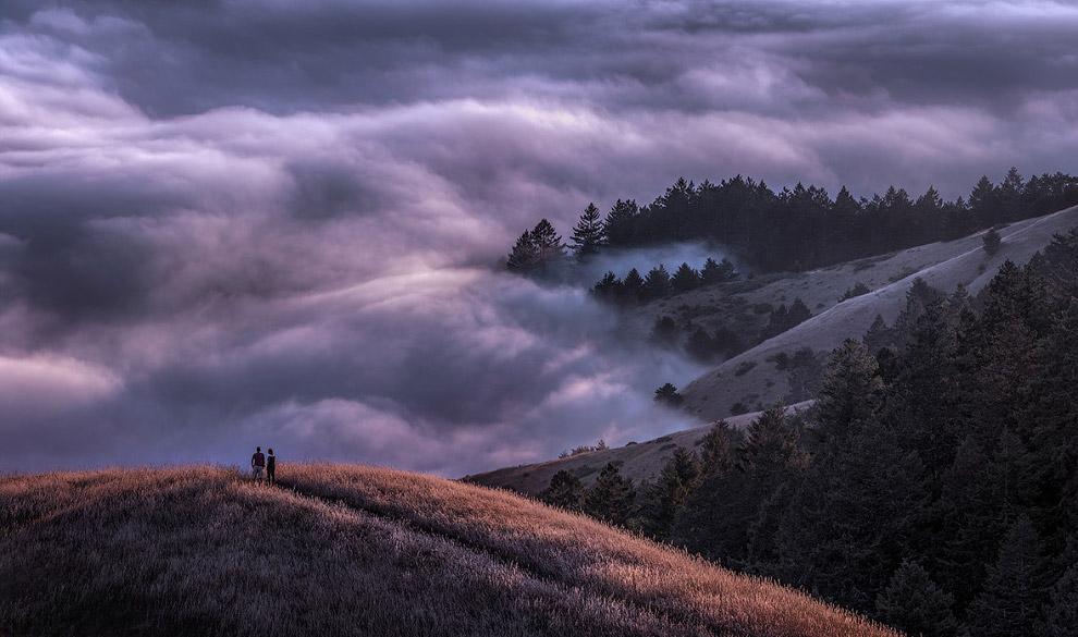 Невероятный туман в горах Калифорнии