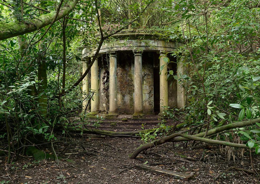 Заброшенное здание в лесу