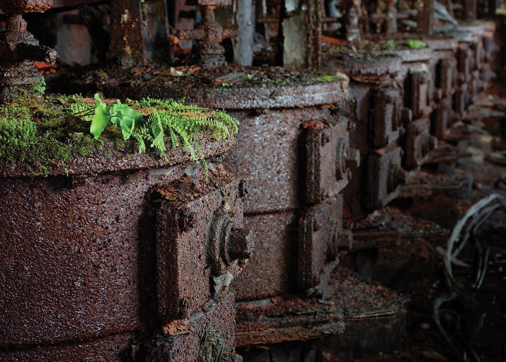 Природа против резервуаров для токсичных отходов в Южном Уэльсе