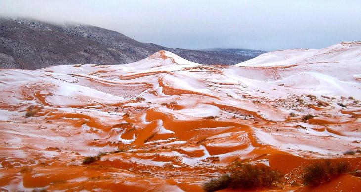 В пустыне Сахара впервые за почти 40 лет выпал снег