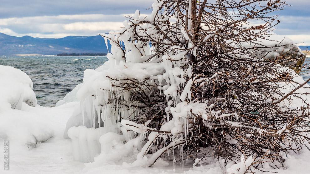 Бушующий Байкал окутывает брызгами и деревца стоящие недалеко от берега