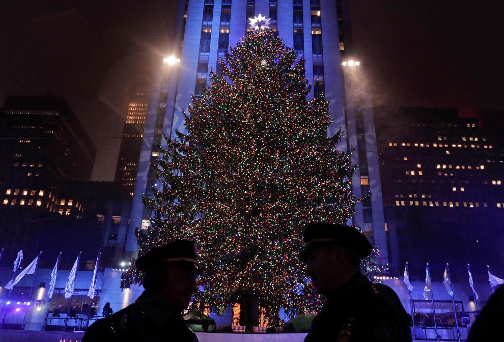 Рождественская ёлка в Рокфеллеровском центре