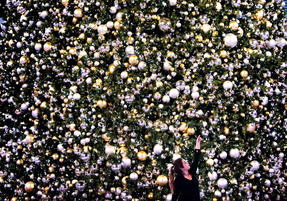 Новогодняя елка на катке в Лос-Анджелесе