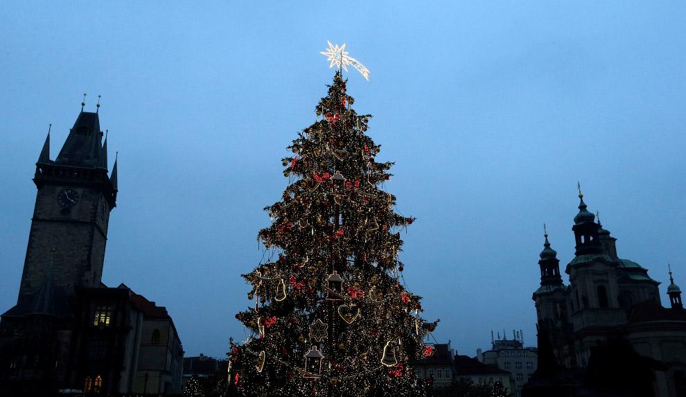 Рождественская елка на Староместской площади в Праге
