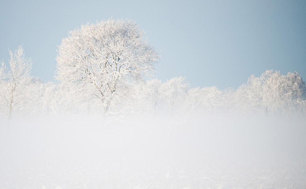 Снежный пейзаж возле Брауншвейге, Германия
