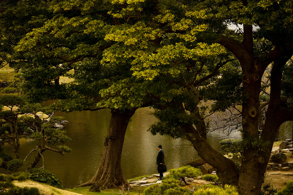 Бизнесмен прогуливает работу и пришел на пруд в Токио