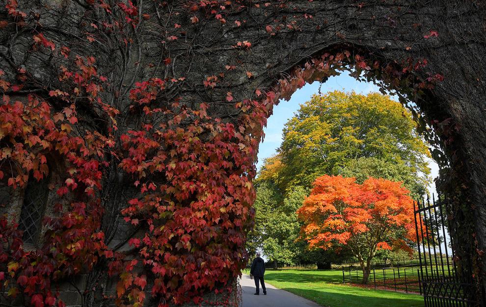 Осень в графстве Уилтшир
