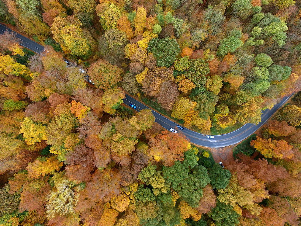 Осенняя дорога с высоты птичьего полета, Кельн, Германия