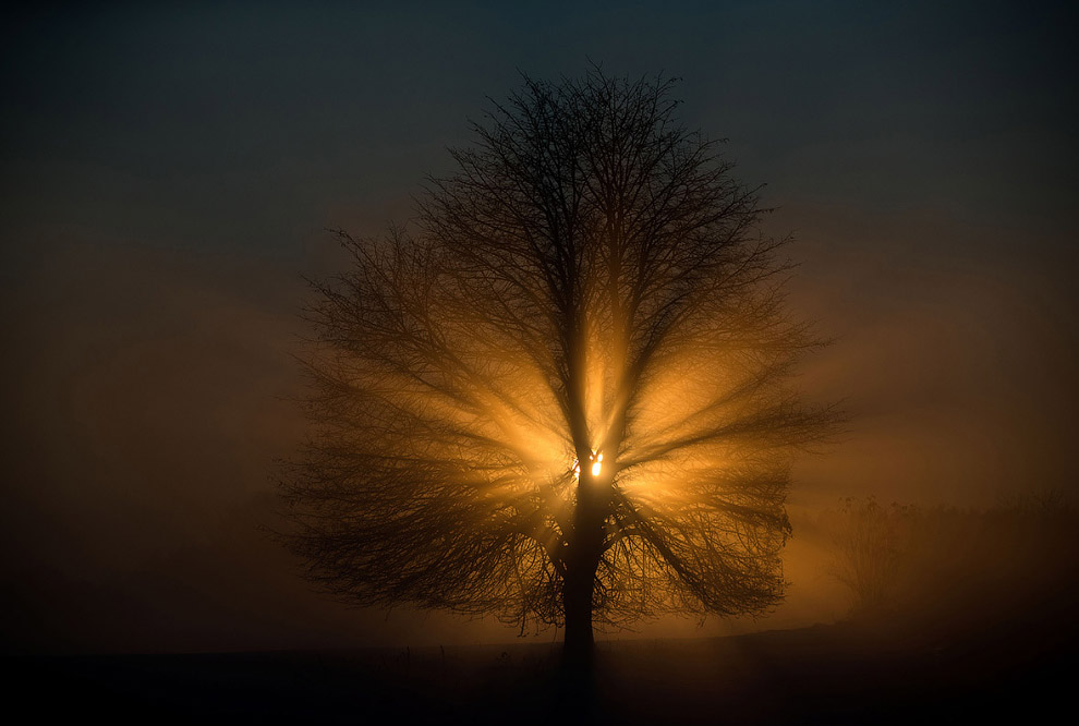 Закат в туманном поле в восточном Германии