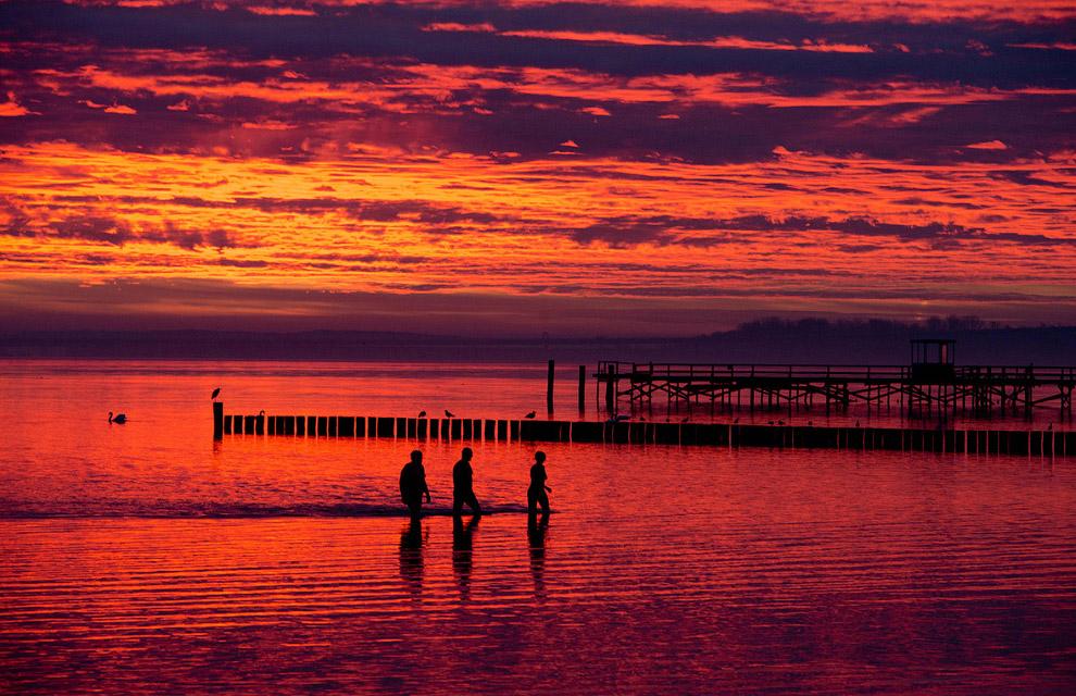 Лебедь, море и остров Рю́ген в Балтийском море