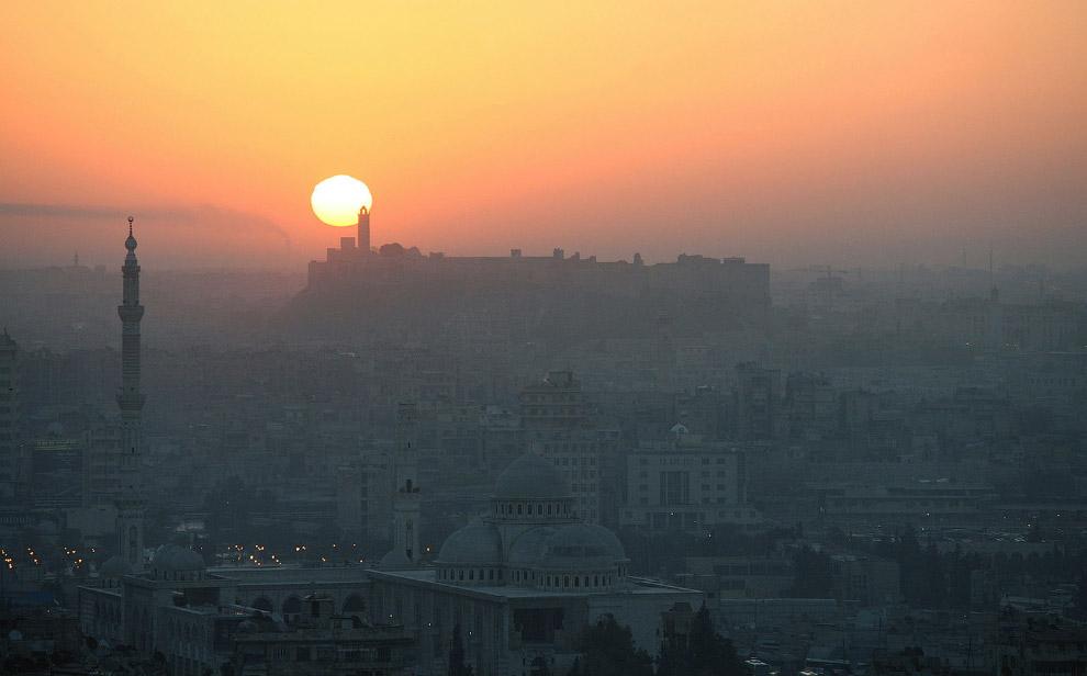 Рассвет над Алеппо