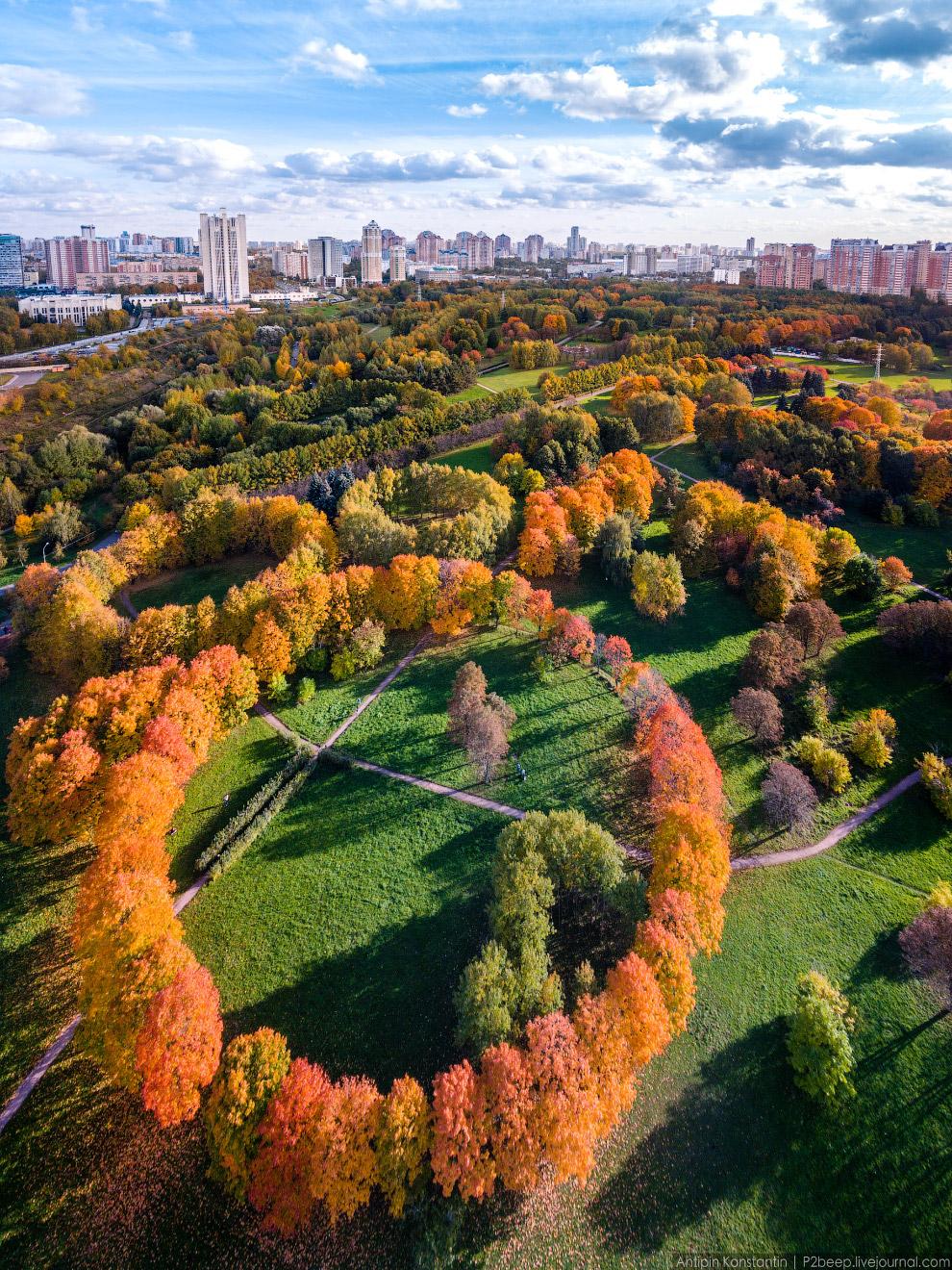 Тоже очень давняя задумка. Октябрь в парке 50-летия Октября.