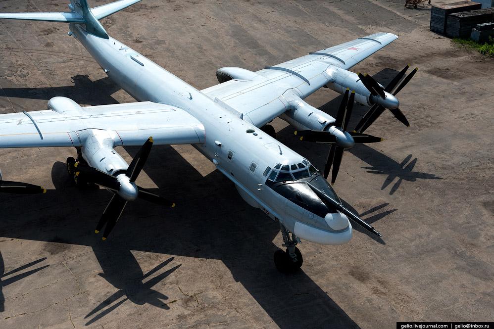Длина Ту-95 и размах его крыльев практически совпадают — около 50 метров.