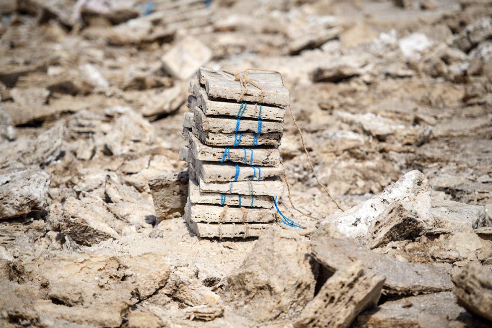 Собраные солевые блоки с поверхности пустыни Данакиль