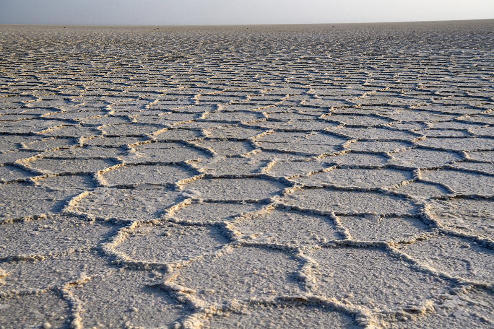Бескрайние соляные виды
