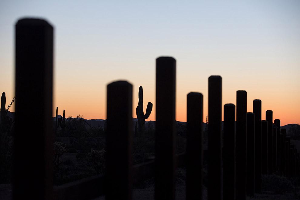 Часть пограничного забора и кактусы на закате