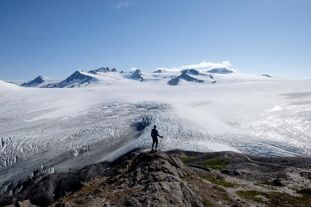 Ледяное поле Хардинг