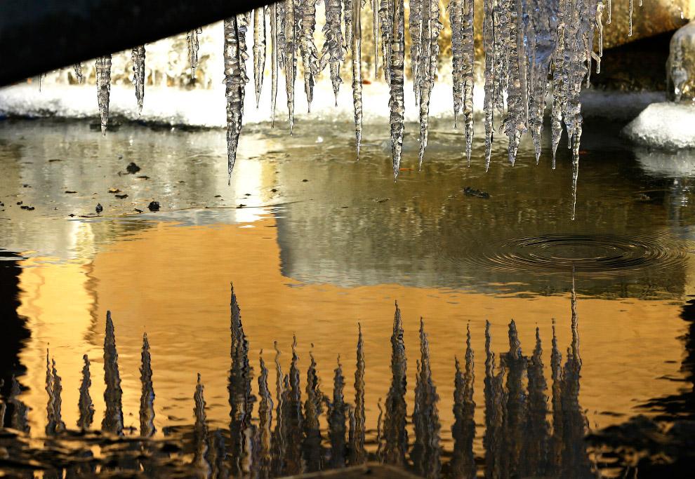 Сосульки — это ледяные сталактиты