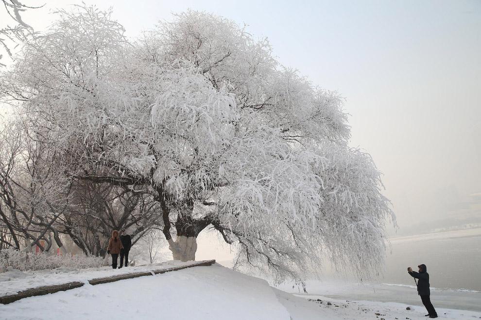 Снежный парк в провинции Ляонин, Китай