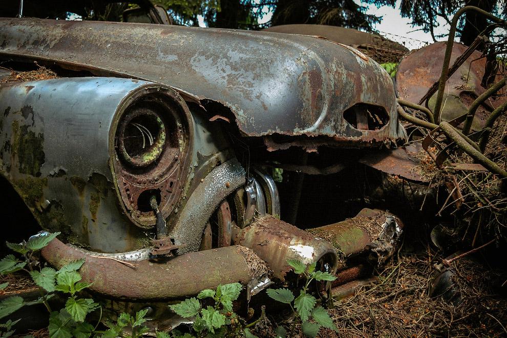 Природа почти победила Buick Roadmaster 53 года выпуска