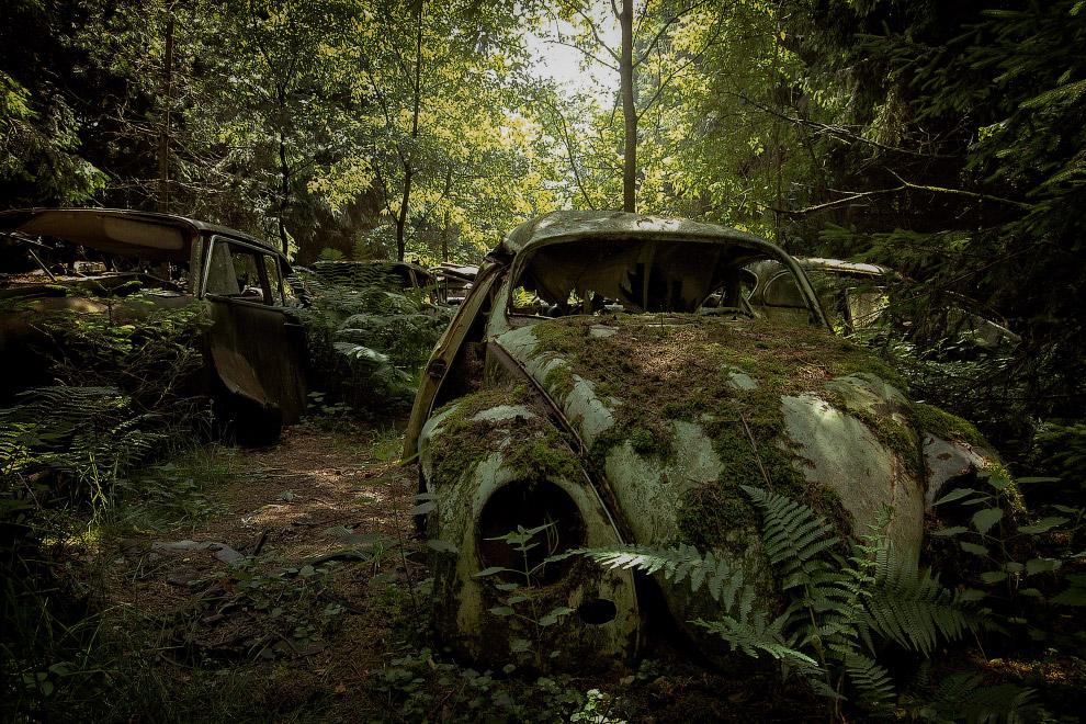 Много закончивших свой век машин можно встретить в лесах Европы