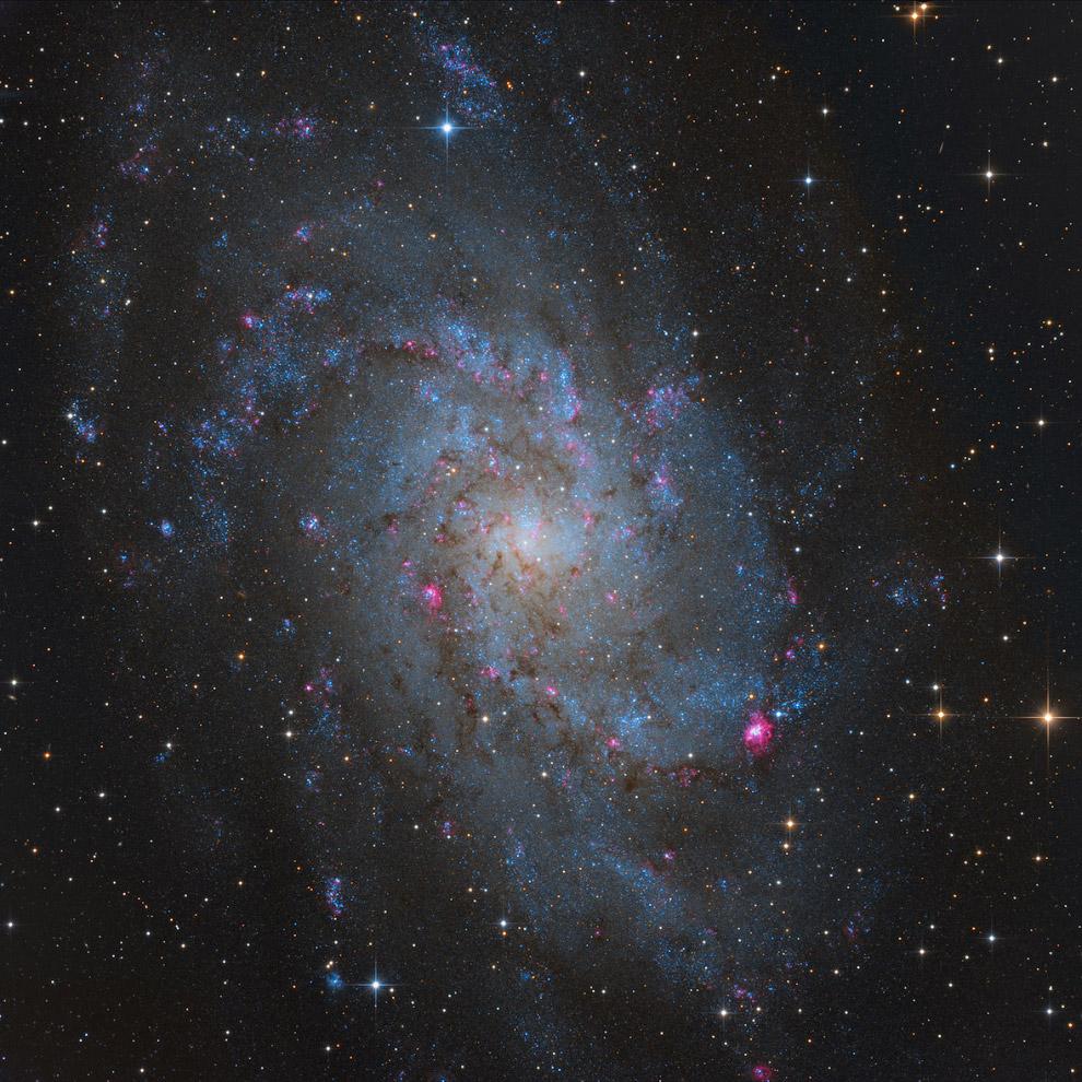 Спиральная галактика Треугольника типа Sc в созвездии Треугольника