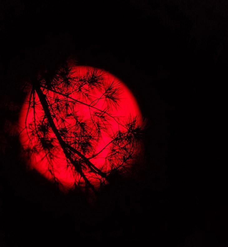 Красное солнце над Детройтом. Снято с альфа-водородным фильтром