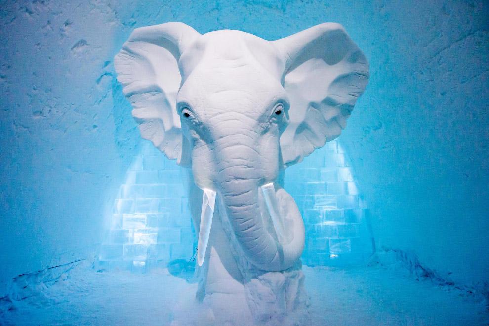 В одном из номеров есть снежный слон