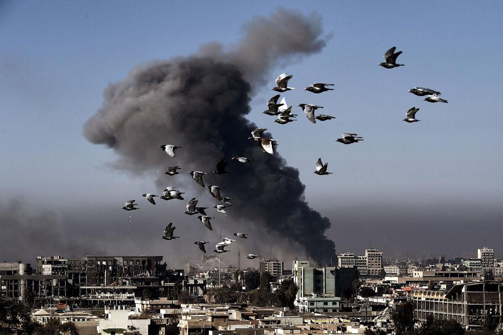 Жизнь в иракском городе Мосул