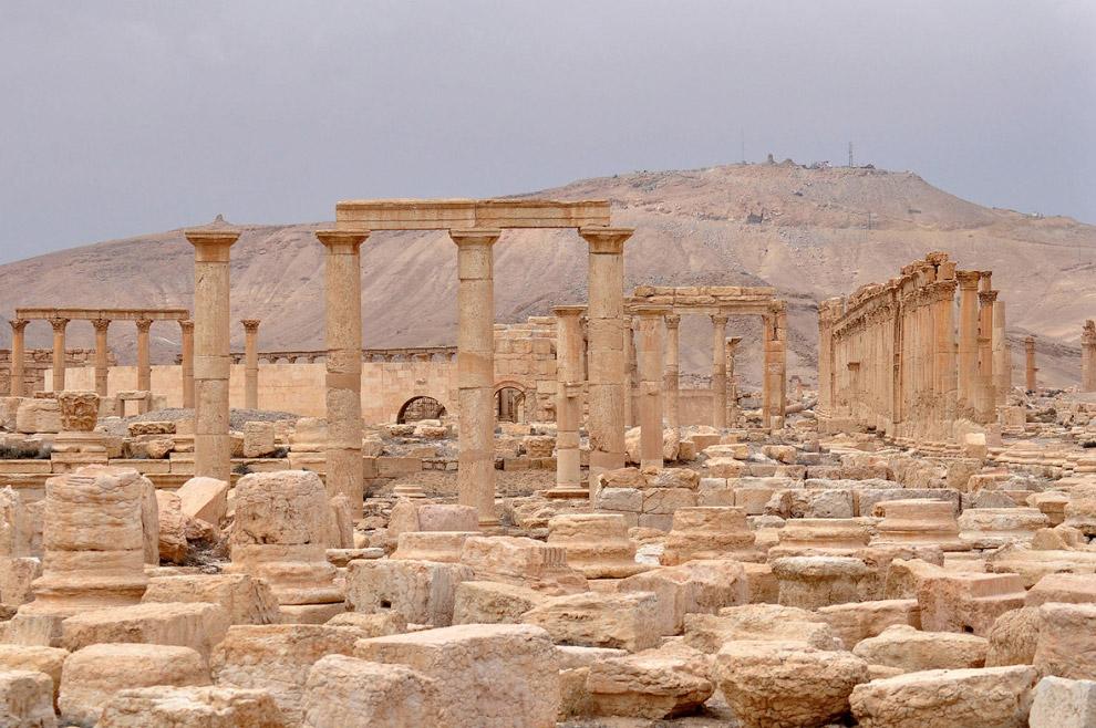 Общий вид древней Пальмиры