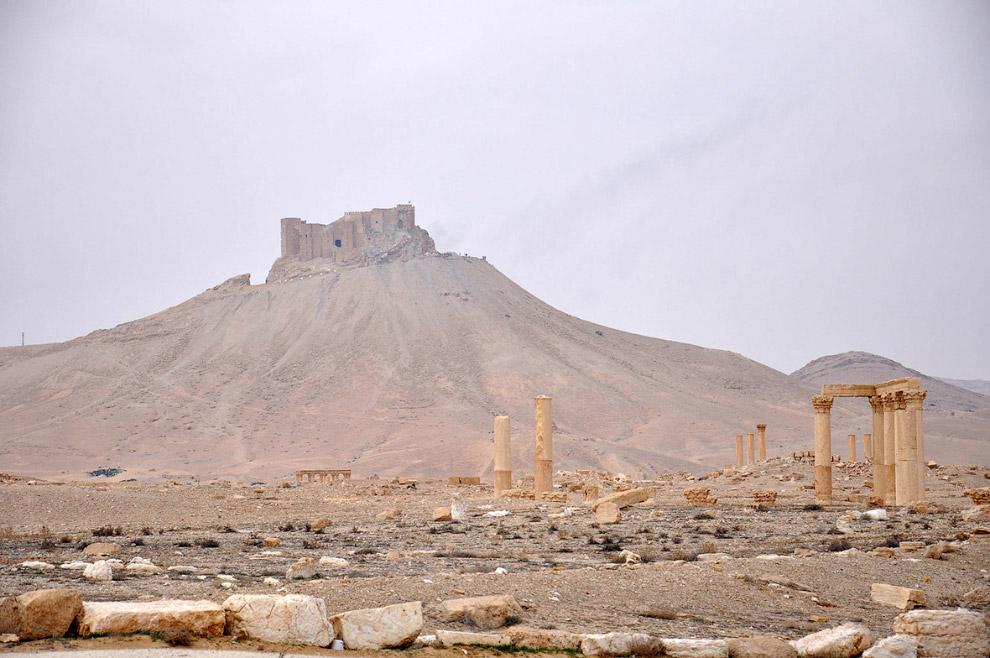 Вверху — цитадель древнего города Пальмира
