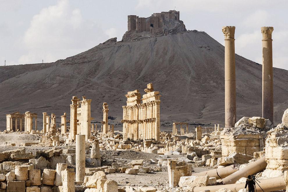 Разрушенная древняя Пальмира и цитадель