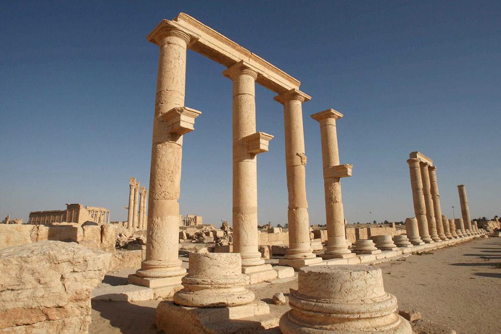 Новое освобождение древней Пальмиры