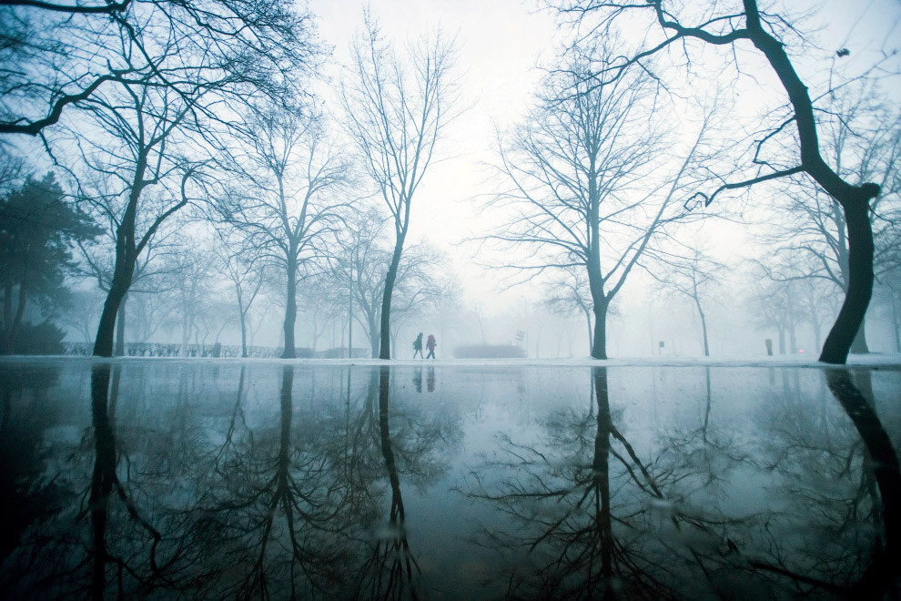 Во время тумана городской парк Будапешта выгляди таинственно