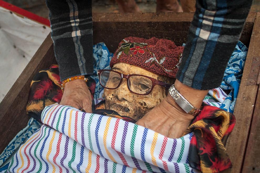 Зомбмленд в Индонезии