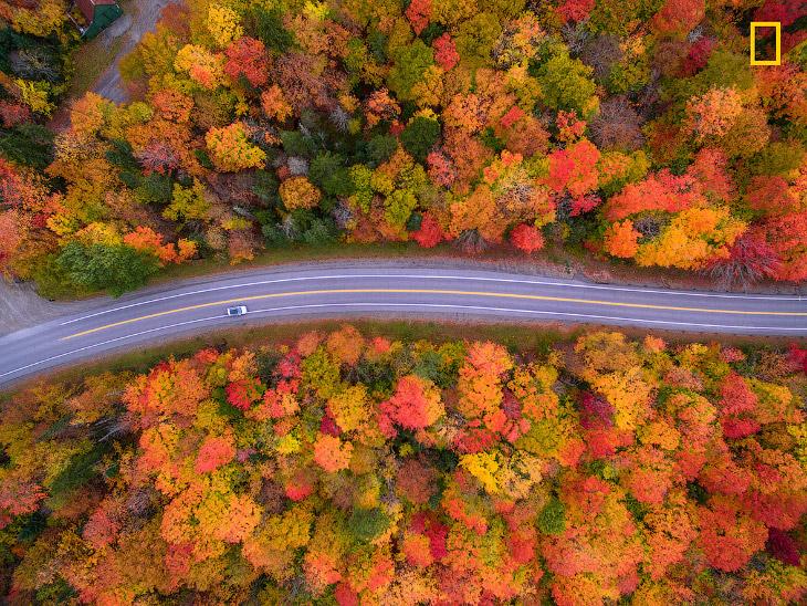 Осенние краски Нью-Гэмпшира с высоты