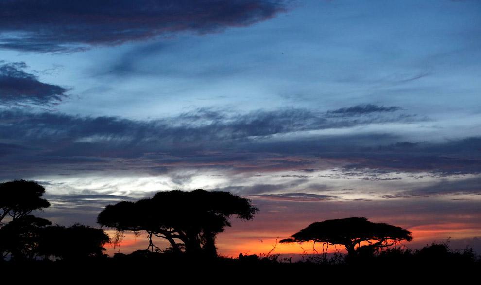 Закат Национальном парке Амбосели
