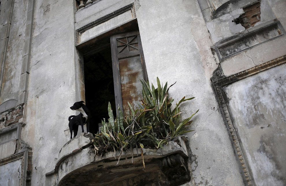 Заброшенный дом и его новый хозяин в Гаване, Куба
