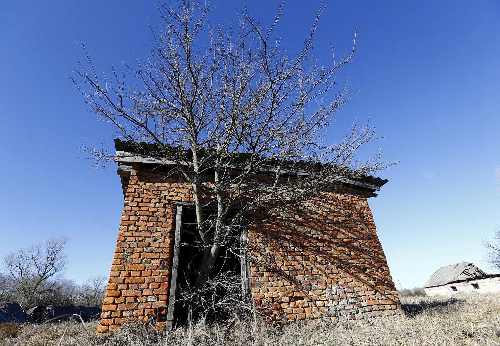 Заброшенные дома в 30-километровой зоне отчуждения вокруг Чернобыльской АЭС
