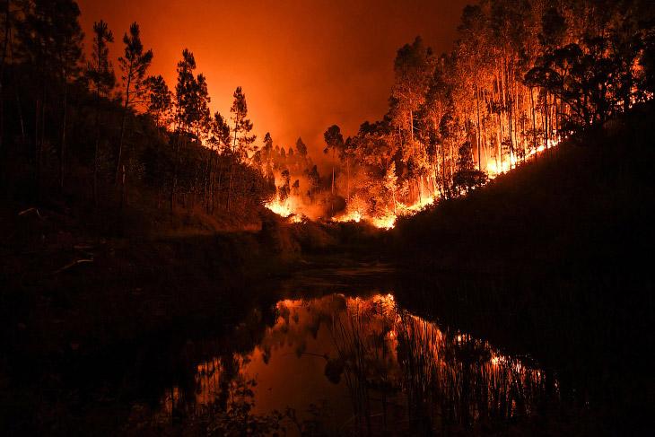 Мощнейший пожар в Португалии