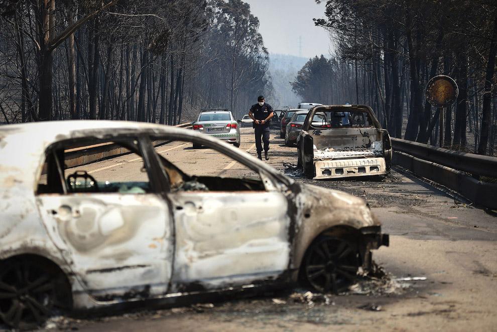 Целая дорога сгоревших машин