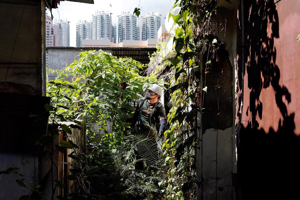 Осмотр заброшенных жилых зданий в Гонконге