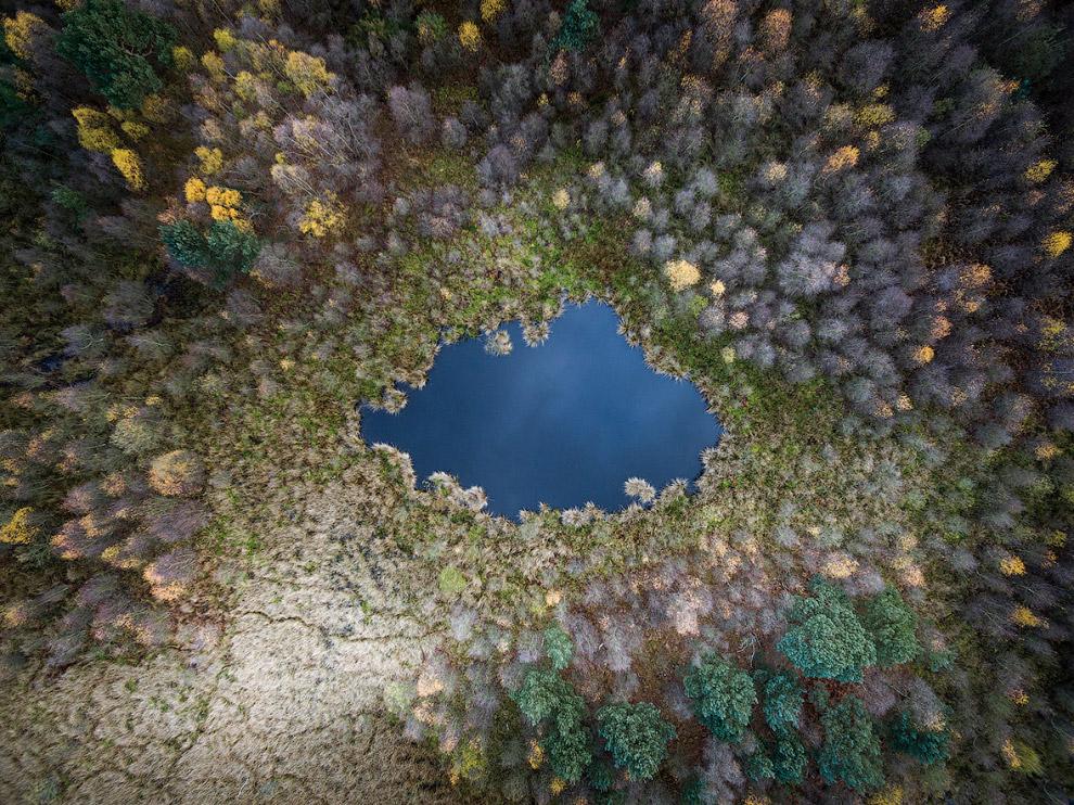 Небольшое озеро в лесу в Северном Йоркшире