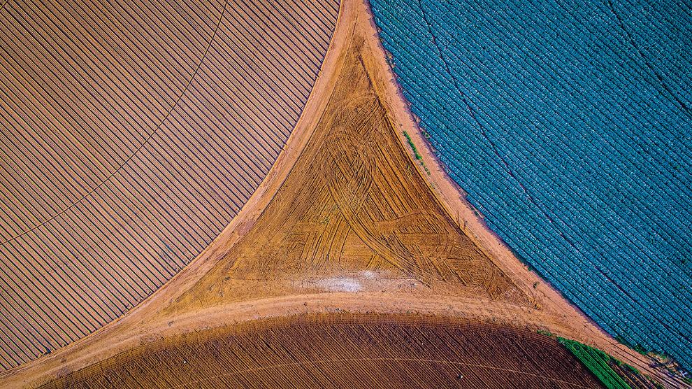 Сельхозпосадки в Южной Африки
