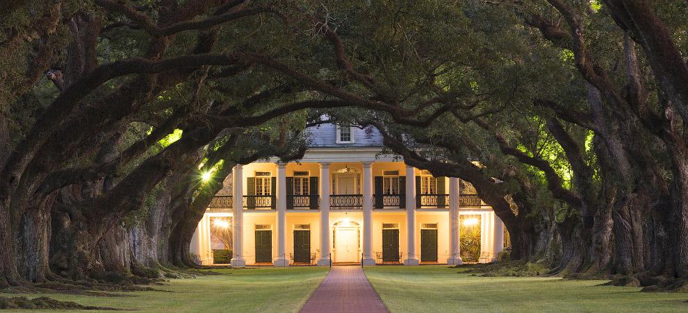 Особняк в Луизиане и дубовая аллея