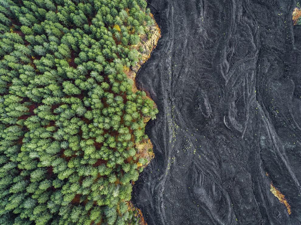 Граница затвердевшей лавы и леса