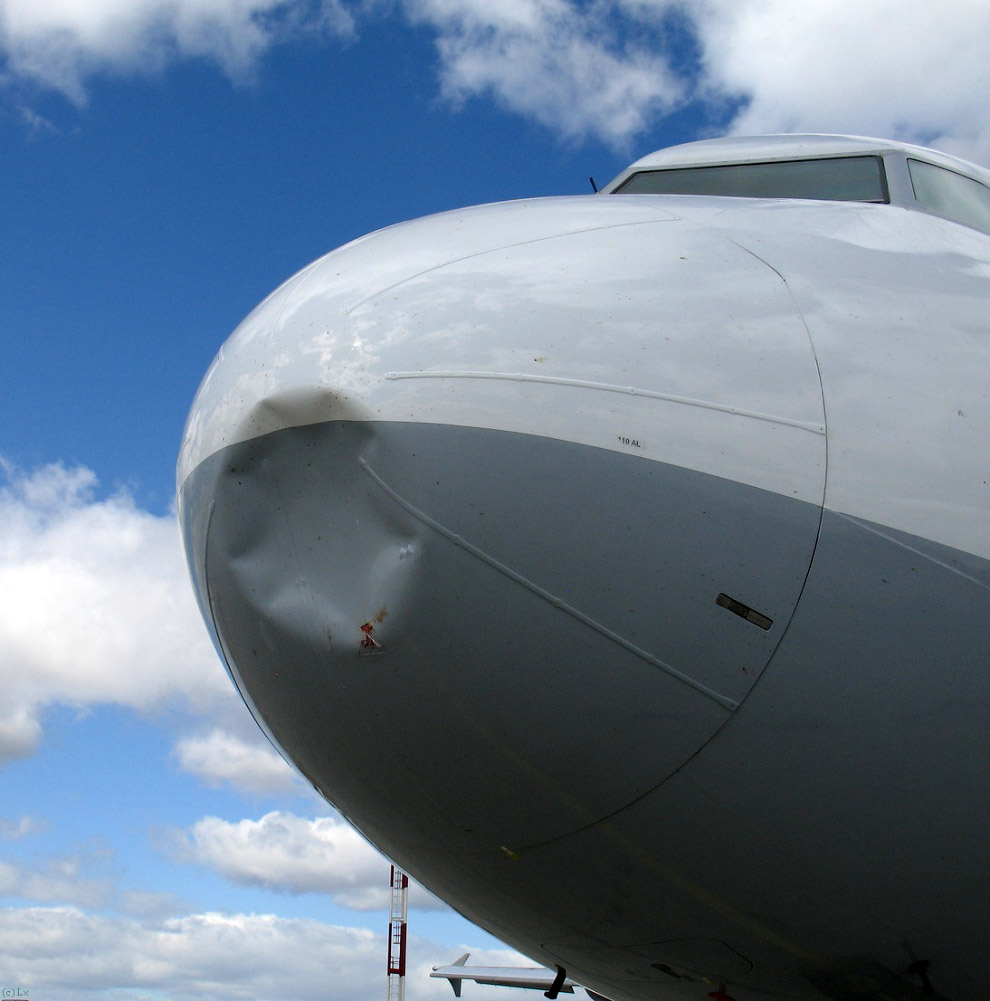 Вот как выглядитстолкновение с птицамис места пилота и снаружи