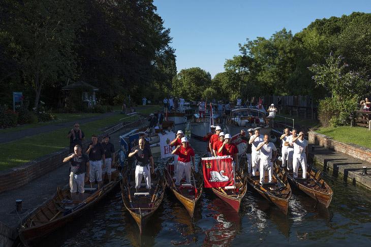 Торжественное начало переписи лебедей на Темзе