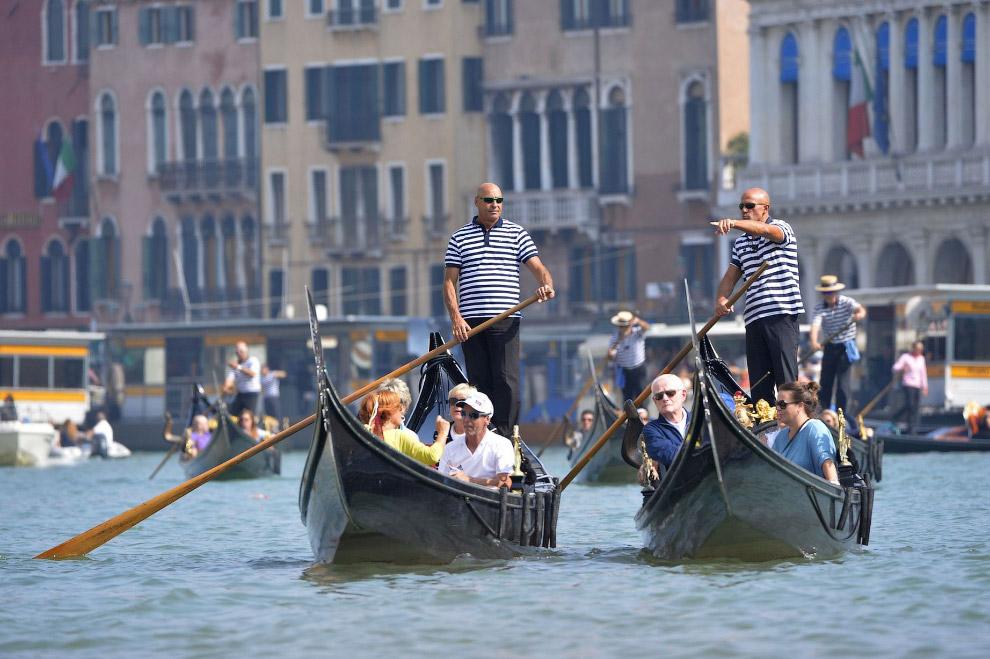 власти Венеции