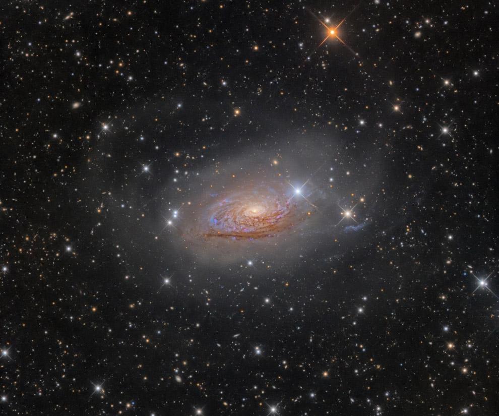 Галактика M 63 «Подсолнух» в созвездии Гончие Псы